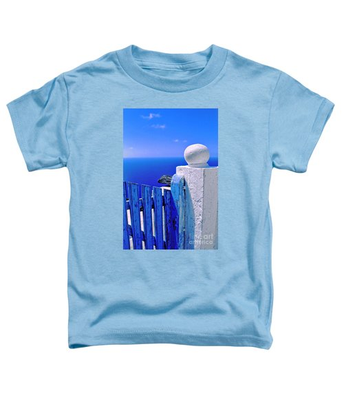 Blue Gate Toddler T-Shirt by Silvia Ganora