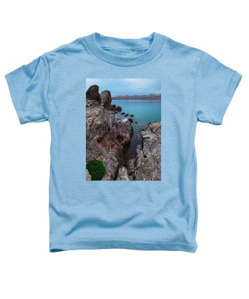 Blue, Green, Gray Toddler T-Shirt