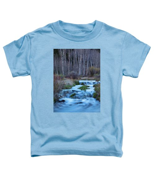 Blue Hour Streaming Toddler T-Shirt by James BO Insogna