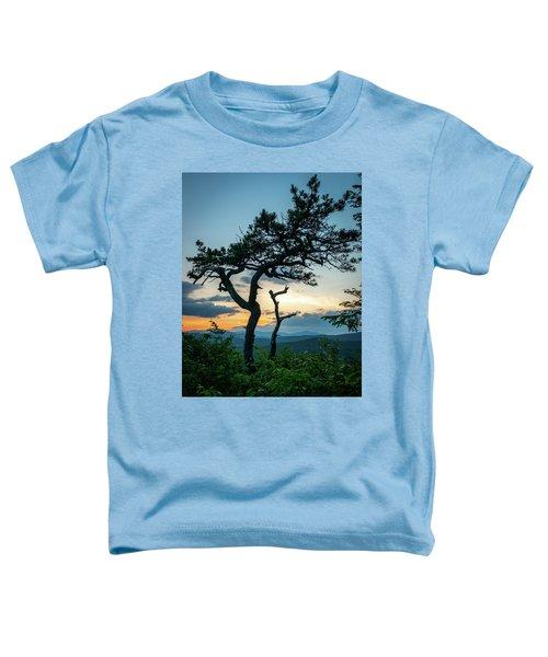 Blue Ridge Mountains Dr. Tree Toddler T-Shirt