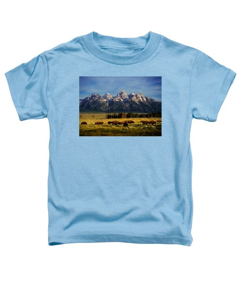 Buffalo Under Tetons Toddler T-Shirt