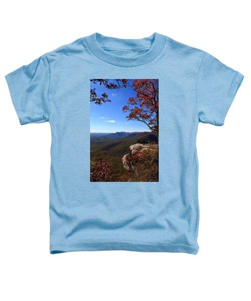 Caesars Head State Park In Upstate South Carolina Toddler T-Shirt