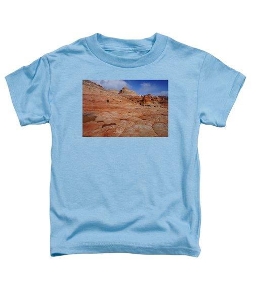 Checkered Red Rock Toddler T-Shirt