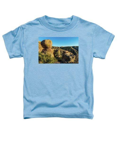 Cheers For Chiricahua Toddler T-Shirt