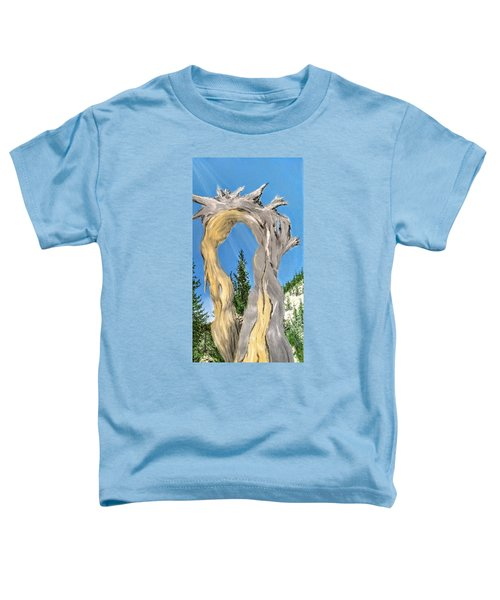 Church Window Toddler T-Shirt