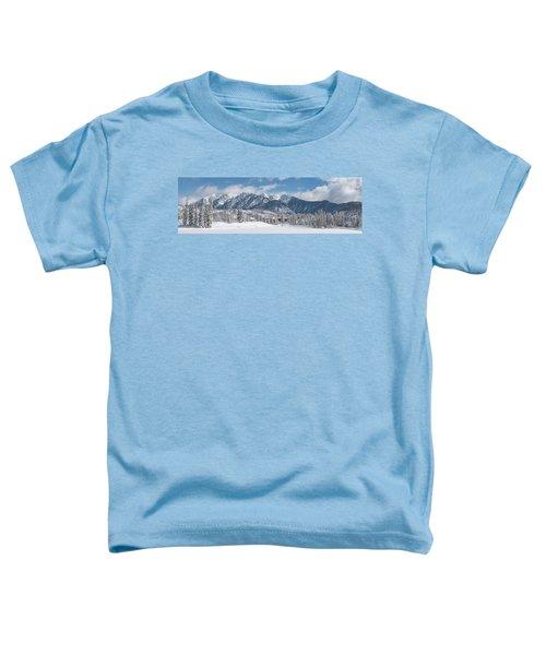 Colorad Winter Wonderland Toddler T-Shirt