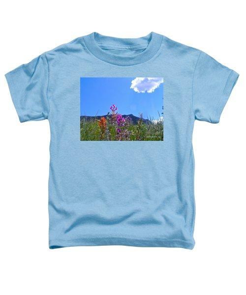 Colorado Colors Toddler T-Shirt
