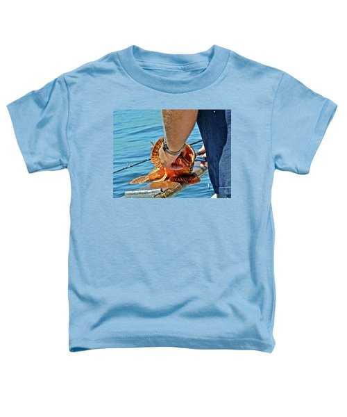 Colorful Catch Toddler T-Shirt