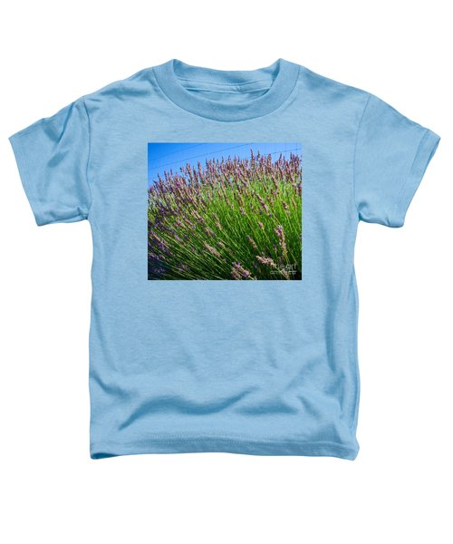 Country Lavender I  Toddler T-Shirt