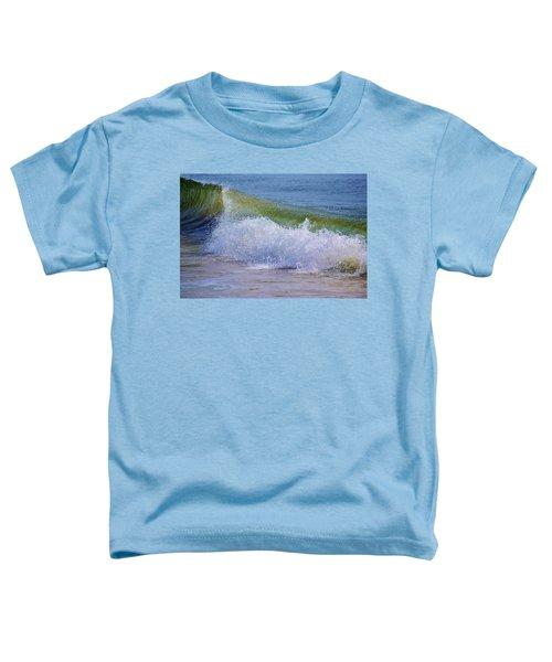 Crash Toddler T-Shirt