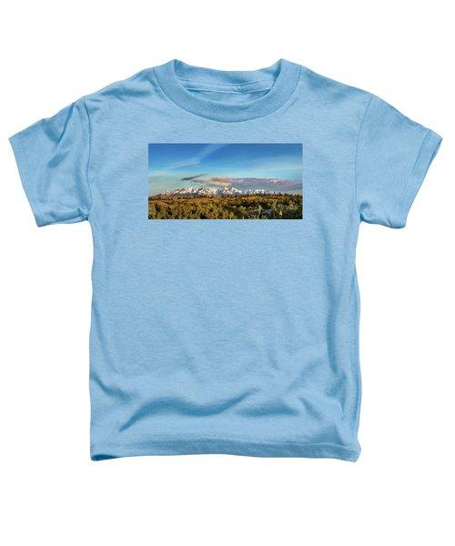 Crazy Mountains Toddler T-Shirt