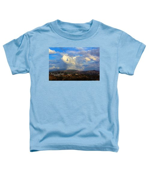 Dana Point View From Cliff Toddler T-Shirt