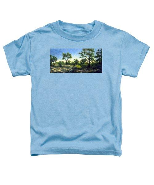 Desert Wash Toddler T-Shirt