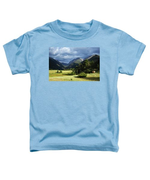 Endovalley Aftenoon Toddler T-Shirt