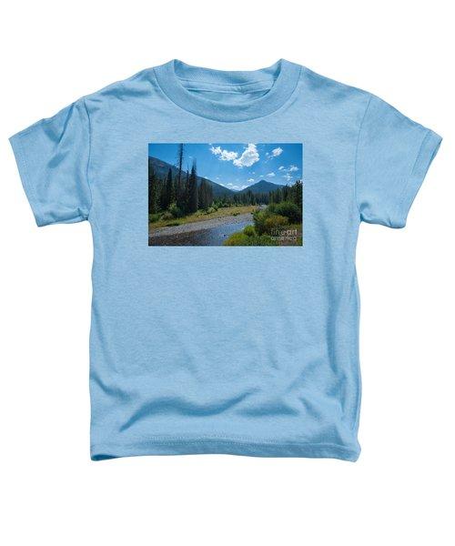 Entering Yellowstone National Park Toddler T-Shirt