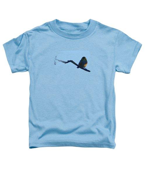 Eye To Eye With Silvereye Toddler T-Shirt