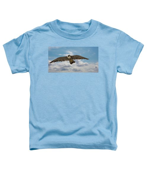 Eyes In The Sky Toddler T-Shirt
