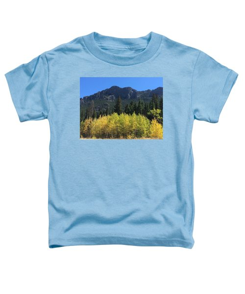 Fall At Twin Sisters Toddler T-Shirt