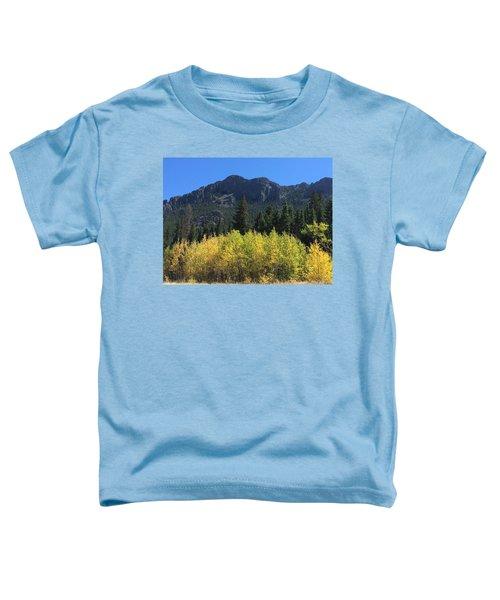 Fall At Twin Sisters Toddler T-Shirt