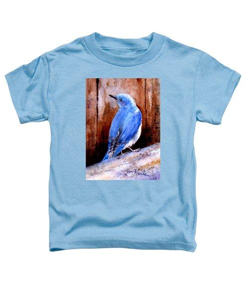 Firehole Bridge Bluebird - Male Toddler T-Shirt