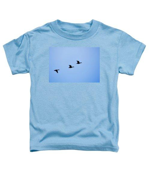 Flight Of Three Toddler T-Shirt