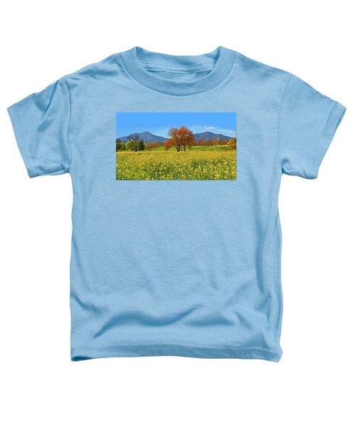 Flowering Meadow, Peaks Of Otter,  Virginia. Toddler T-Shirt