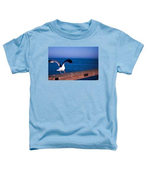 Gull Dance Toddler T-Shirt