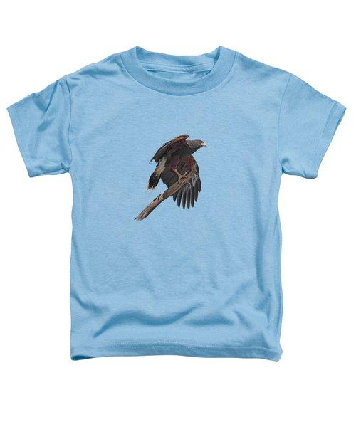 Harris Hawk - Transparent Toddler T-Shirt by Nikolyn McDonald