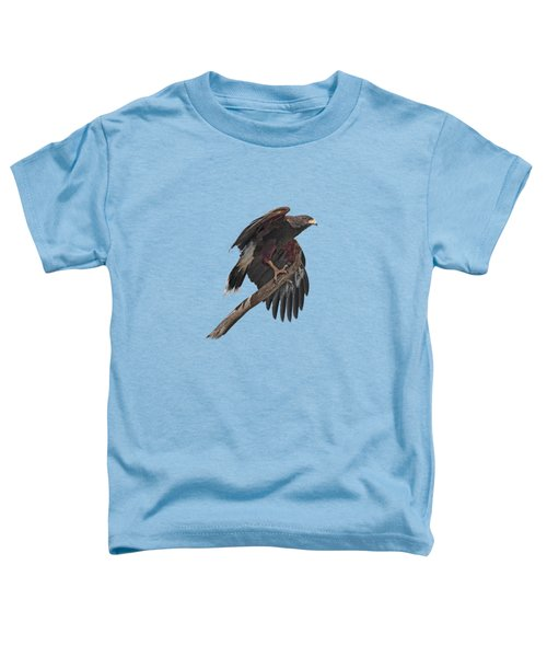 Harris Hawk - Transparent Toddler T-Shirt
