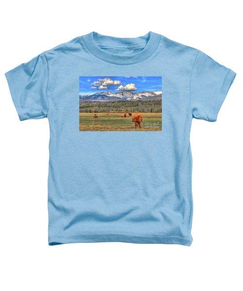 Highland Colorado Toddler T-Shirt by Scott Mahon