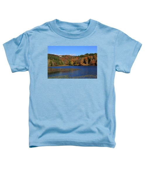 House In The Mountains Toddler T-Shirt
