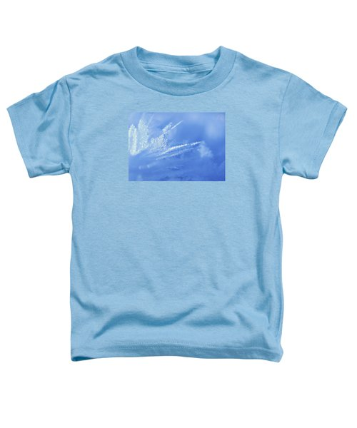Ice Crystals Toddler T-Shirt