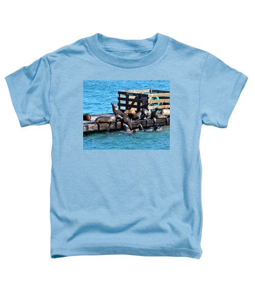 Keep Off The Dock - Sea Lions Can't Read Toddler T-Shirt