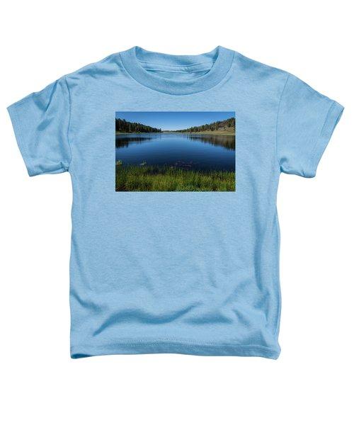 Laguna Meadow Lake Toddler T-Shirt
