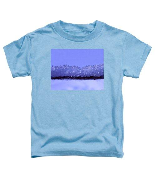 Lake Illusion Toddler T-Shirt