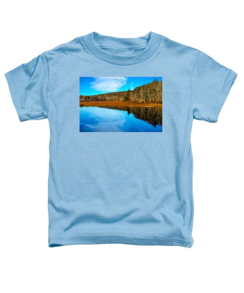Late Fall At A Connecticut Marsh. Toddler T-Shirt
