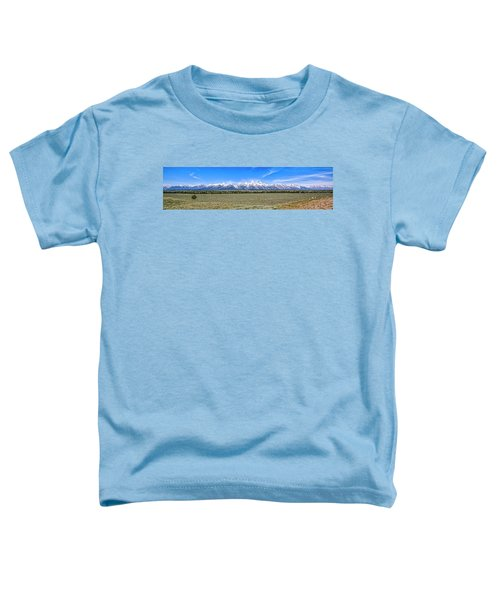 Lone Tree And The Tetons Toddler T-Shirt