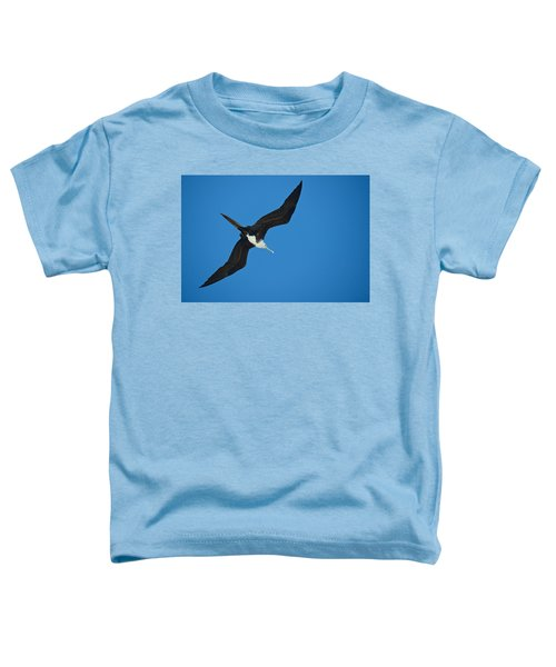 Low Angle View Of A Frigatebird Flying Toddler T-Shirt