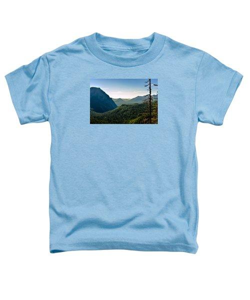 Misty Mountains Toddler T-Shirt