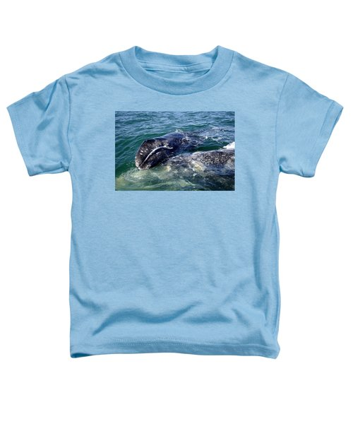 Mother Grey Whale And Baby Calf Toddler T-Shirt