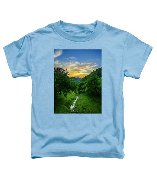 Old Orchard Glow Toddler T-Shirt