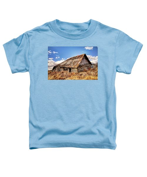 Old Times Toddler T-Shirt