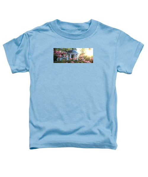 Old Well Dogwoods And Sunrise Toddler T-Shirt