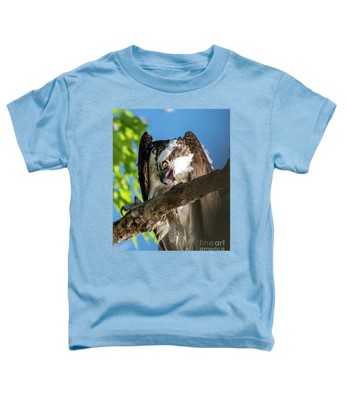 Osprey With Prey Toddler T-Shirt