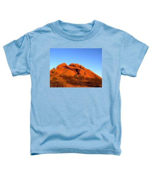 Papago Park 2 Toddler T-Shirt