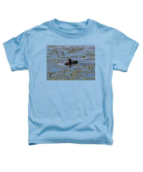 Pied Billed Grebe Lake John Swa Co Toddler T-Shirt