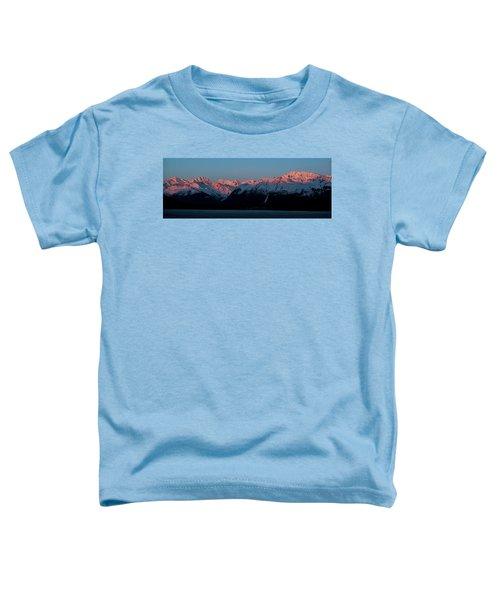 Pink Peaks  Toddler T-Shirt