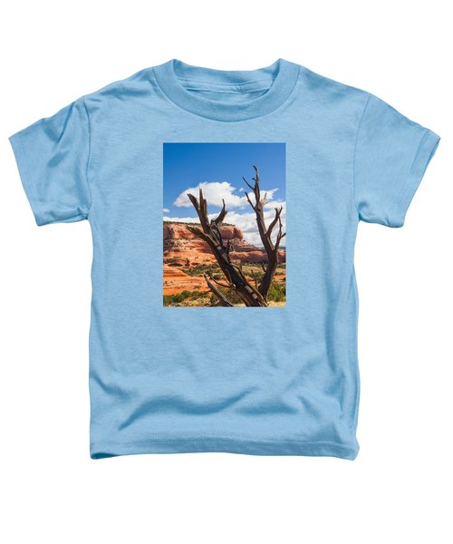 Preserved Toddler T-Shirt