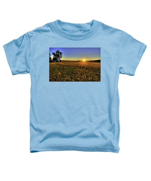 Rays Over The Field Toddler T-Shirt