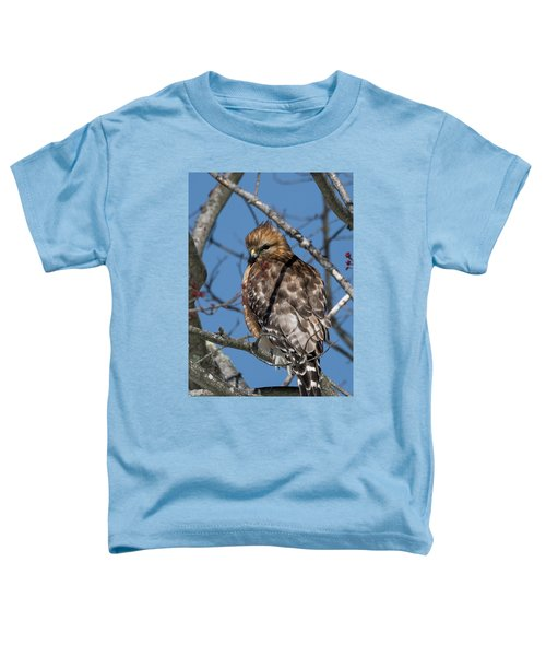 Toddler T-Shirt featuring the photograph Red Shouldered Hawk 2017 by Bill Wakeley